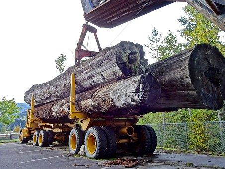 Lumber, Timber Truck, Logging, Forestry, Equipment