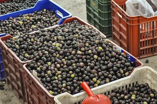 Spain, Greece, Olives, Market, Vegetable Market