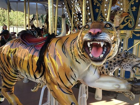 Tiger, Carousel, Carnival, Amusement, Ride, Park