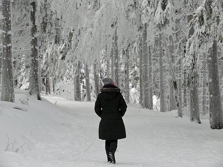 Winter, The Winter's Tale, Winter Dream, Winter Time