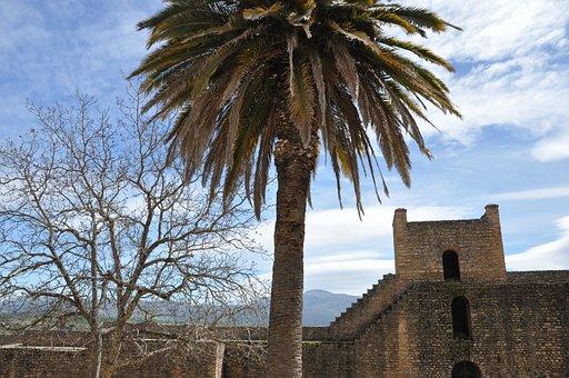 Architecture, Tree, Palma, Monument, Spain, Roundabout