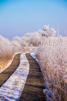 Winter, Snow, Nature, Wintry, White, Cold, Snowy