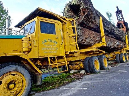 Log Truck, Transport, Trailer, Wood, Vehicle, Logging