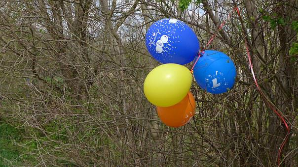 Balloons, Bush, Mark, Colorful, Yellow, Orange, Blue