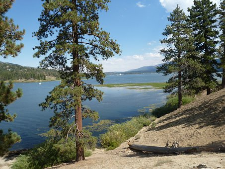 Big Bear, Lake, Forest, Rocks, Rock Formation, Outdoors