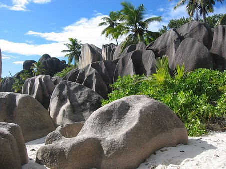 Seychelles, Holiday, Palm Trees, Rock, Sand, Island