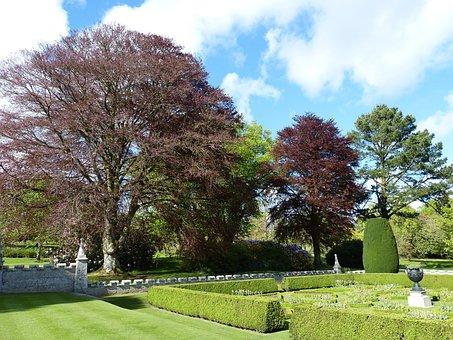 Park, Cornwall, England, United Kingdom, Garden
