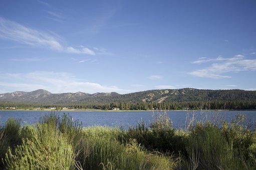 Lake, Big Bear Lake, Vacation, Wilderness, Forest