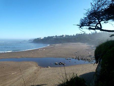 Newport, Coast, Shoreline, Oregon, Usa, Beach, Water