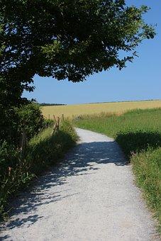 Away, Meadow, Grasses, Blades Of Grass, Meadow Grass
