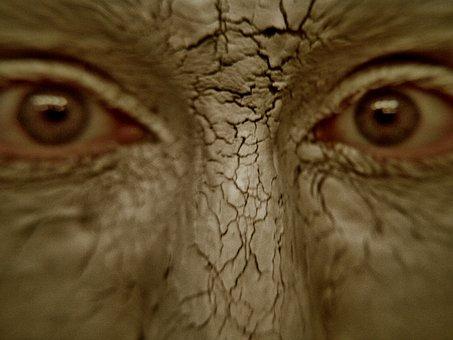 Golem, Clay, Fx Makeup, Brown, Mud, Eyes, Face, Staring