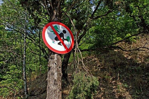 Forest, Sign, Ukraine, Crimean, Crimea, Divorced