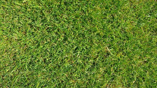 Grass, Green, Football, Football Field, Background