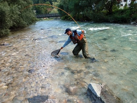 Fly Fishing, Fish, Angler, Savinja