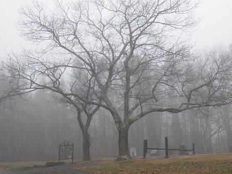 Grave, Graveyard, Graves, Gravestone, Gravestones, Dead