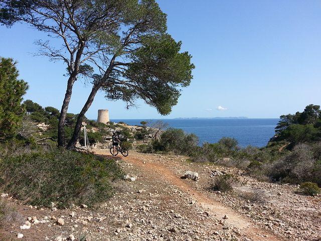 Mallorca, Cala Pi, Pine, Mediterranean, Tower