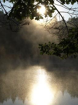 Pond, Surface, Lake, Day, Light, Nature, Morting, Magic