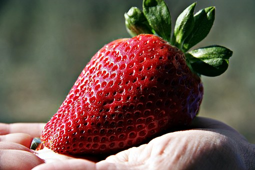 Strawberry, Giant Strawberry, Fruit, Red, Sweet, Flavor