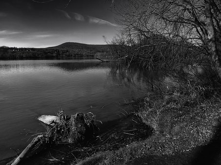 Connecticut River, Hills, Forest, Trees, Lake, Water