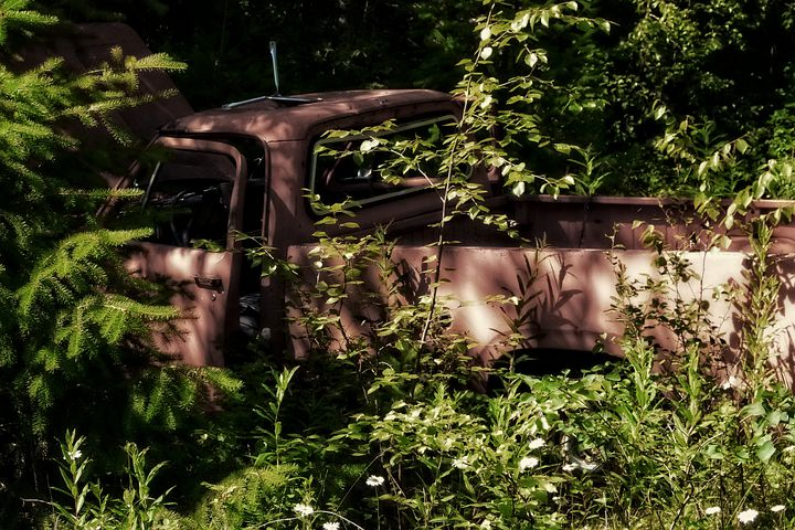Old, Truck, Rusty, Forest, Car, Vehicle