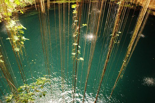Jungle, Water, Sea, Ocean, Pond, Lake, Stream, Brook