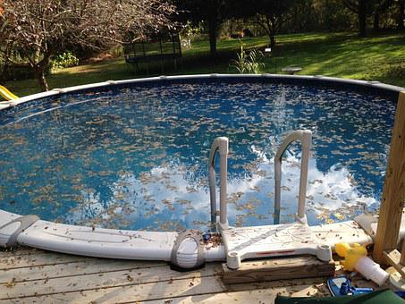 Cleaning, Leaves, Pool, Maintenance, Leaf, Reflection