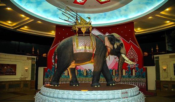 Statue, Elephant, Elephant Museum, Thailand