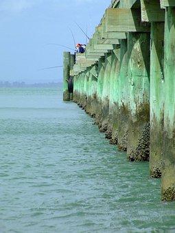 Wharf, Cornwallis, New Zealand, Fishing, Pier, Fishers