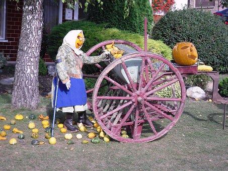Creation, Pumpkin, Seeding-machine