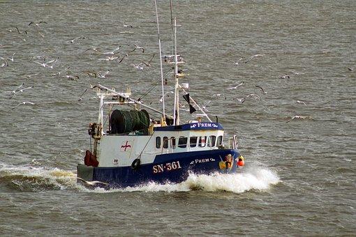 Trawler, Fishing, Nothshields, River Tyne
