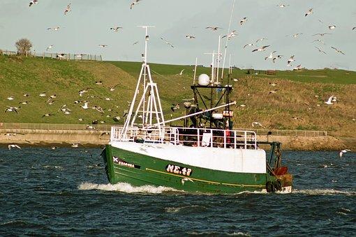 Trawlers, Fishing, Tynemouth, Tyne