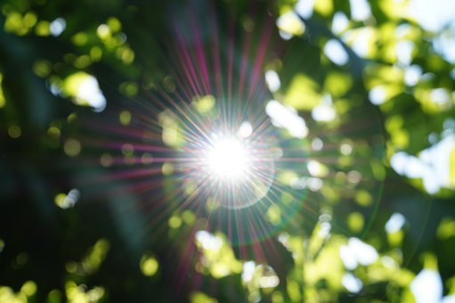Abstract, Sun, Light, Beams, Green, Lens Flair