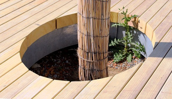 Tree, Reed, Tree Island, Hole, Rondelle, Boards, Area