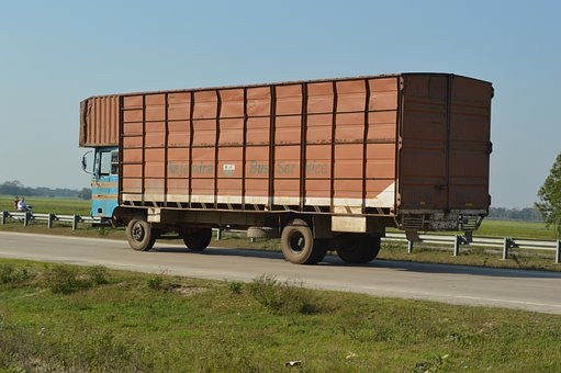 Truck, Lorry, Container, Cargo, Freight, Delivery, Car