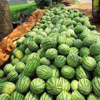Watermelon, Melon, Citrullus Lanatus, Red, Fruit