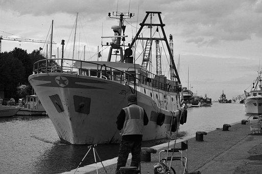 Rimini, Portorimini, Fishing
