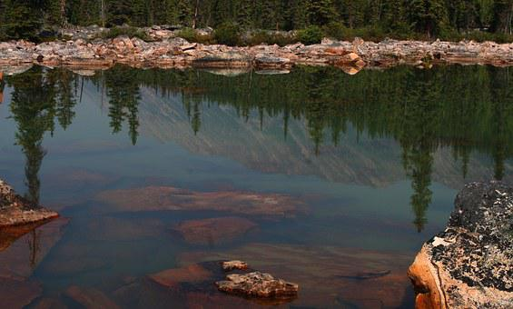 Pink Granite, Granite, Rock Slide, Reflection, Water
