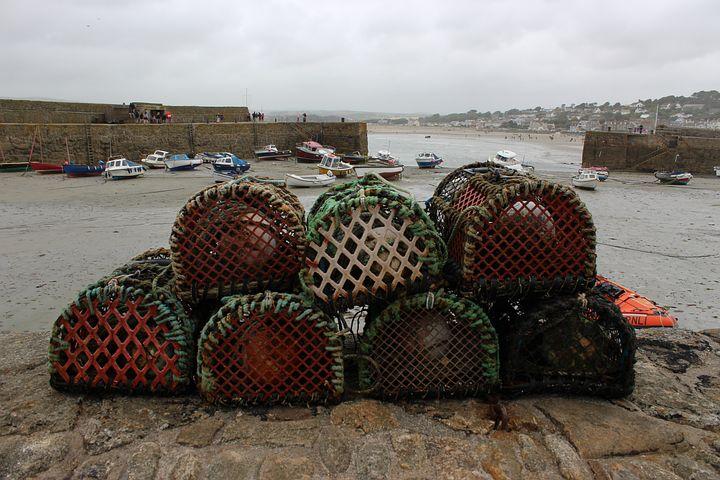 Fishing, Sea, Ocean, Water, Nature, Boat, Fish, Basket