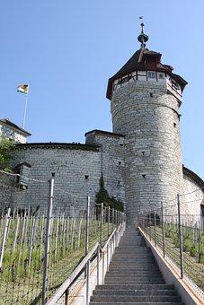 Schaffhausen, Munot, Vineyard