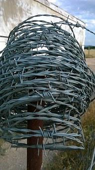 Wire, Wired, Metal, Barbed Wire, Barbed Wire Fence