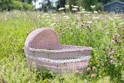 Baby Bassinet, Bassinet, Pink, Wildflowers, Baby, Child