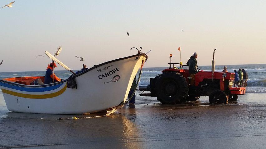 Boat, Sea, Beach, Fishing, Tractor, Fisherman