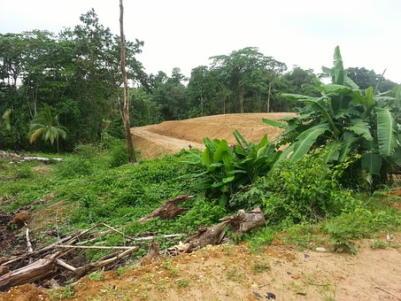 Freehold Land, Trinidad, Mandillon Road