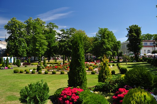 Międzyzdroje, Park, Lawn, Grass, Tree, Shrubs