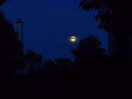 Night, Moon, Setting Moon, Inky Sky, Sky, Dark, Morning