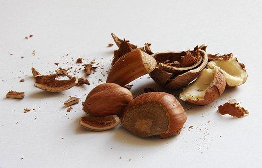 Hazelnuts, Nuts, Shell, Nuclear, Food, Eat
