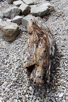 Wood, Driftwood, Drift Wood, Stones, Shore Stones