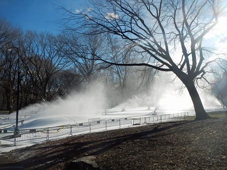 New York City, Central Park, Trees, Snow-making