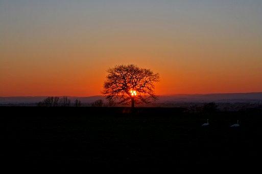 Sunset, Orange, Sky, Nature, Sun, Landscape, Sunlight
