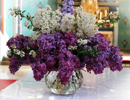 Lilac Bouquet, Lilac, Blossom, Bloom, Ornamental Shrub